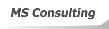 MS Consulting - doradztwo finansowe, zarządzanie projektami UE, finansowanie projektów inwestycyjnych, Pozyskiwanie finansowania, Eko gmina szkolenia, kogeneracja, analizy finansowe, raporty oddziaływania na środowisko, studium wykonalności projektów, przygotowanie inwestycji do realizacji